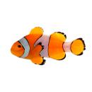 Clown fish has a name for a reason!